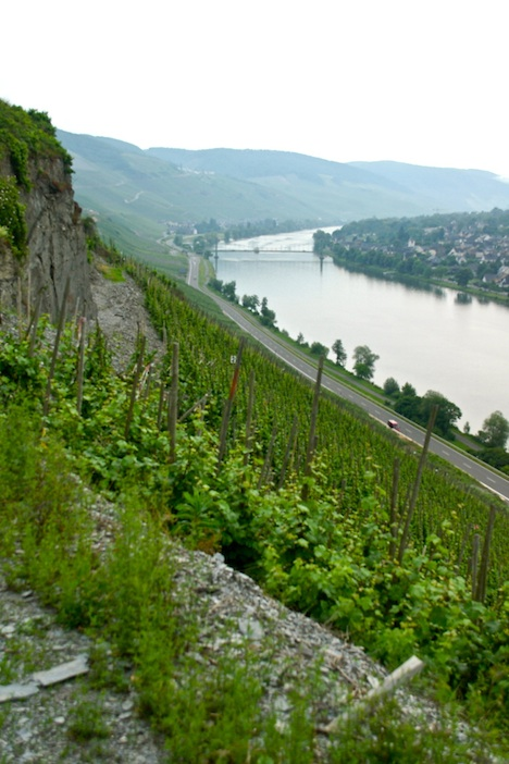 High above the Mosel, Tim Pawsey photo