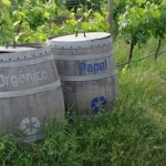 A Visit to Emiliana Vineyards: the Heart of Chile's Organic Wine Movement